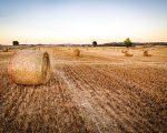 Usvojeni amandmani HOK-a na Zakon o poljoprivrednom zemljištu